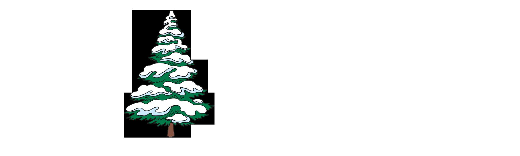 151119-kiju-header-element-schneebaum