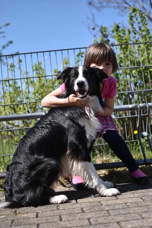 k-Hund im Jugendtreff 2 (1)